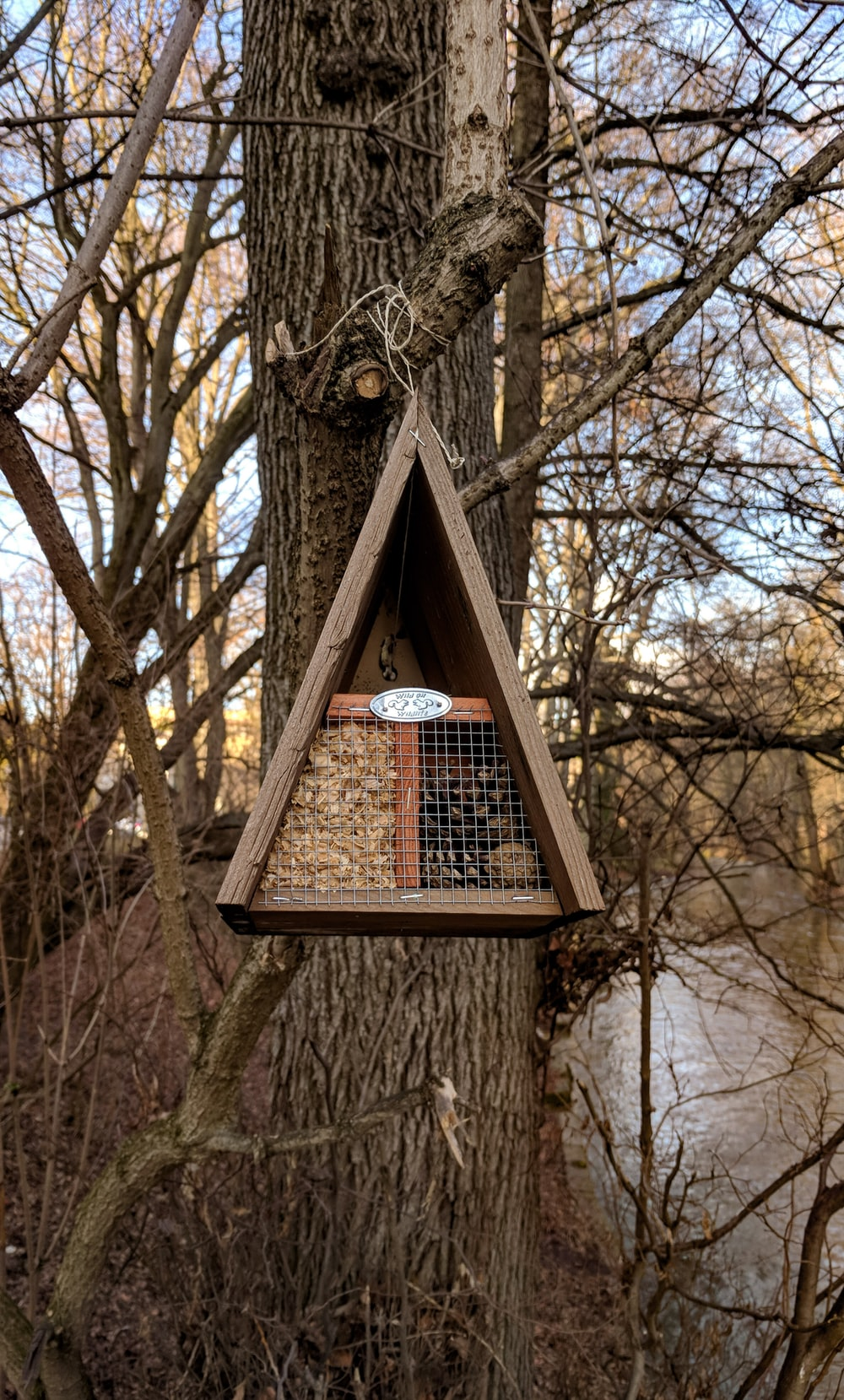 brown wooden birdhouse on brown tree
