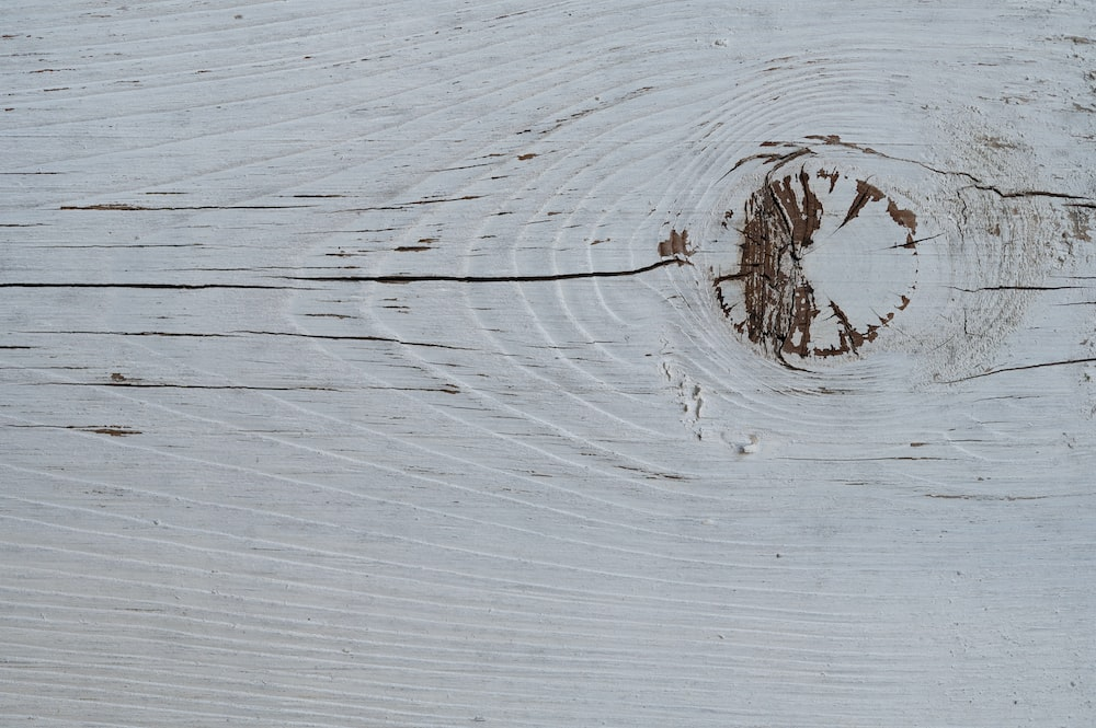 brown tree branch on white wooden surface