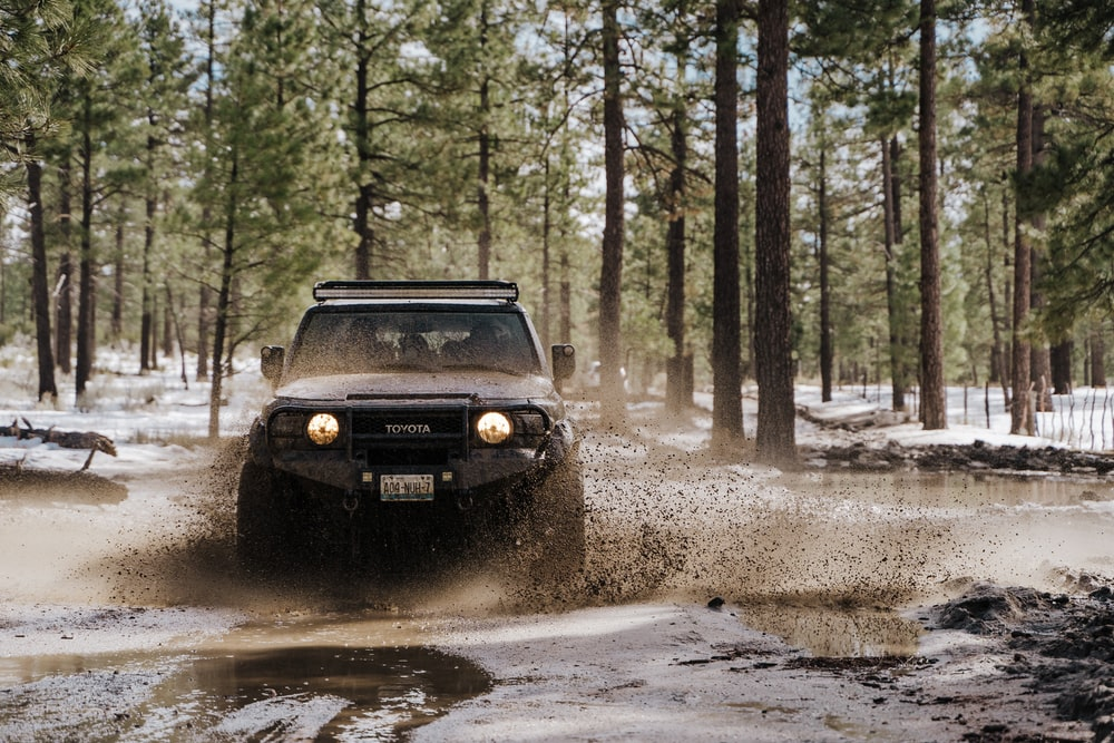 black jeep wrangler on dirt road surrounded by trees during daytime