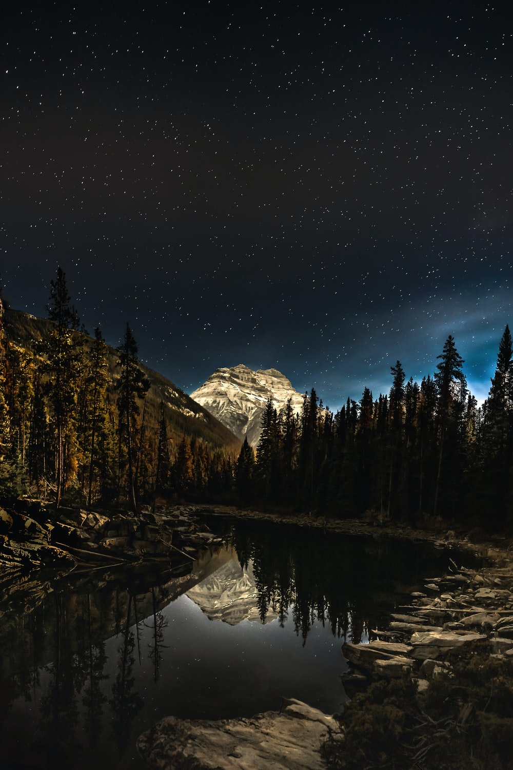 green pine trees near snow covered mountain during night time