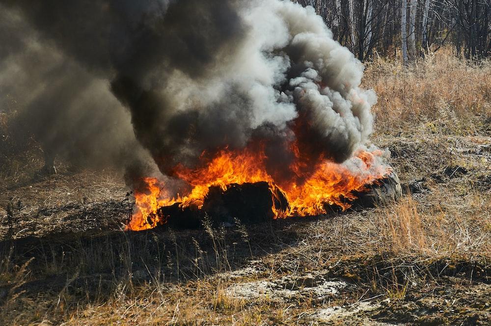 burning woods on ground during daytime