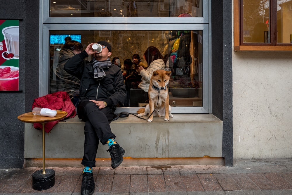 man in black jacket sitting beside brown dog
