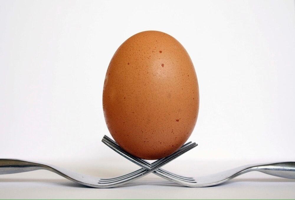 brown egg on black metal rack