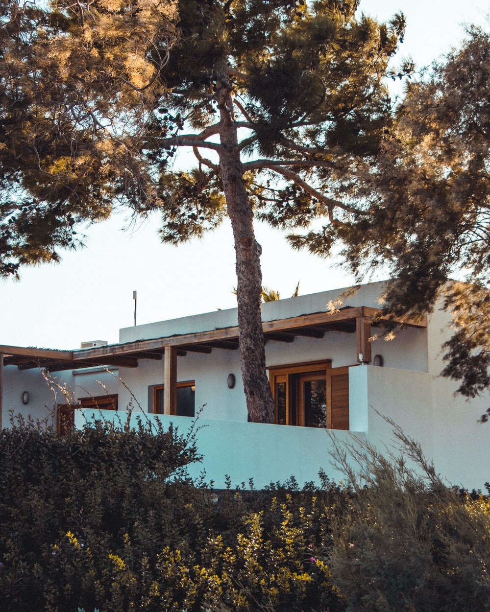 white concrete house with green trees