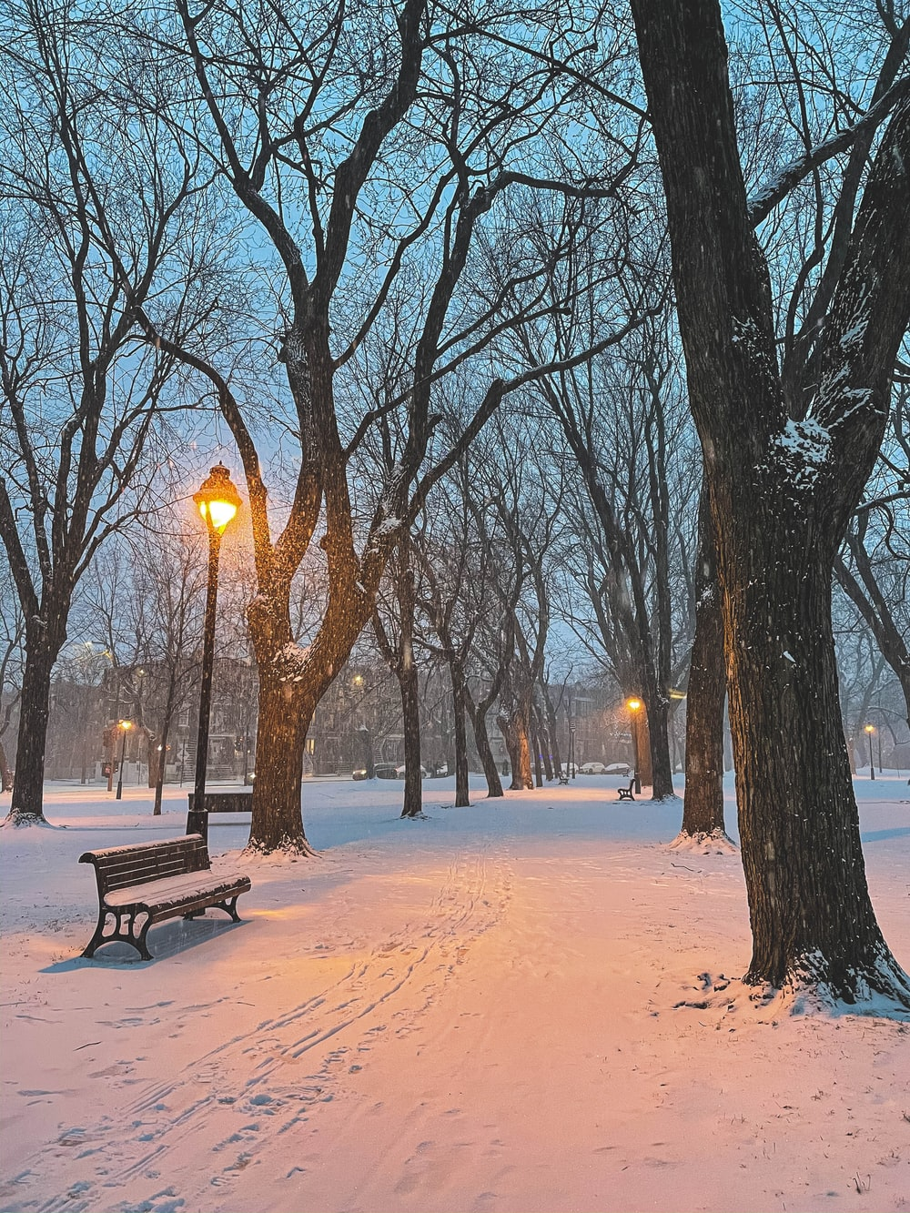 brown wooden bench on snow covered ground during night time
