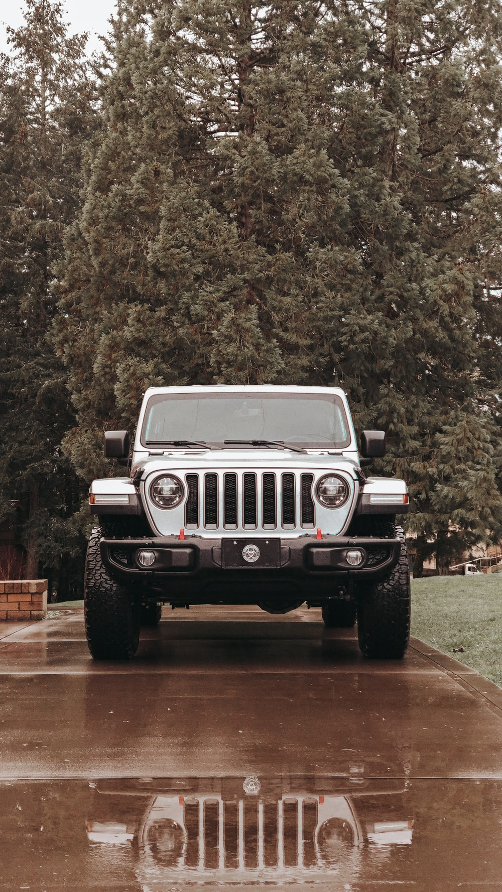 white jeep wrangler parked near green trees during daytime