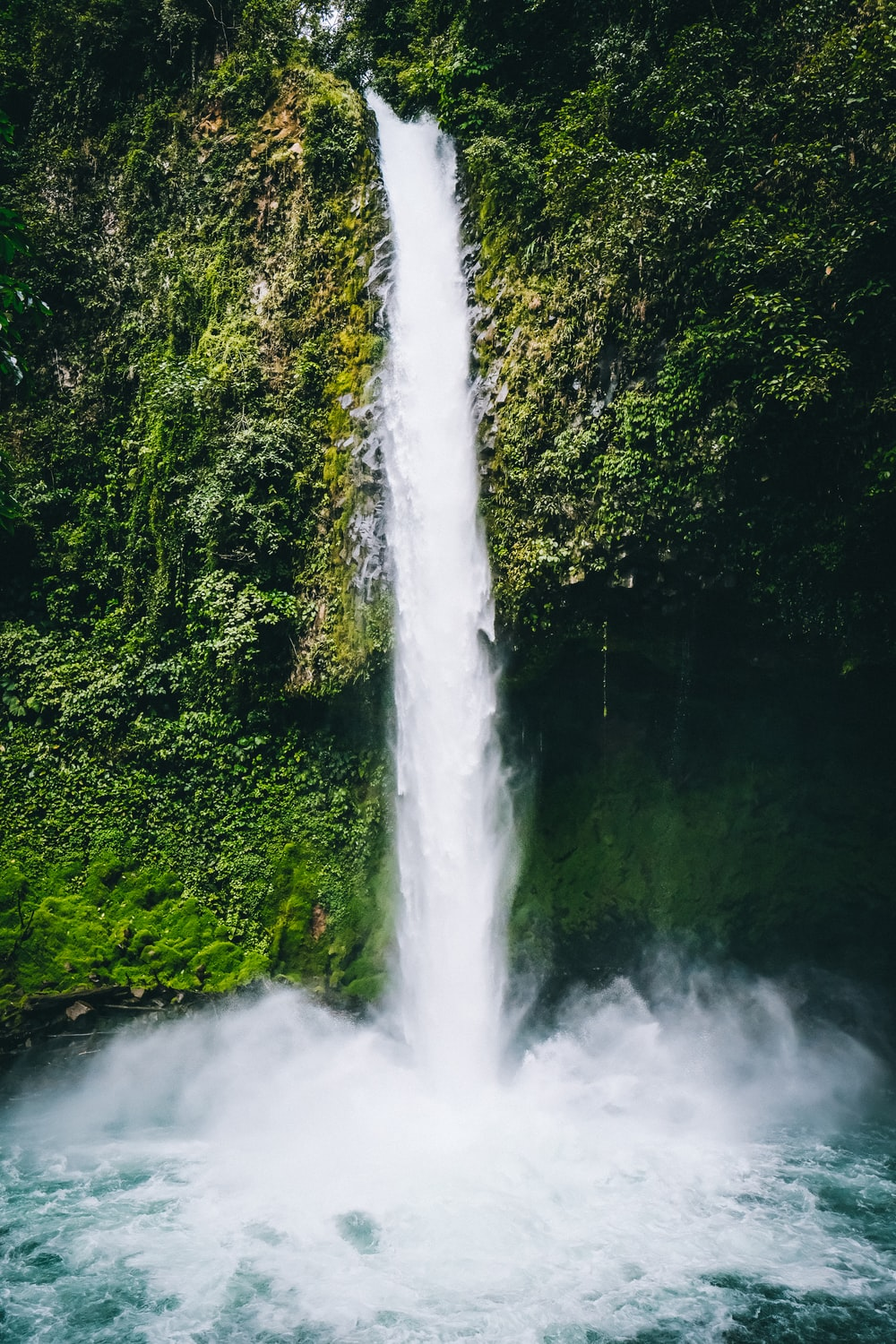 waterfalls in the middle of green trees