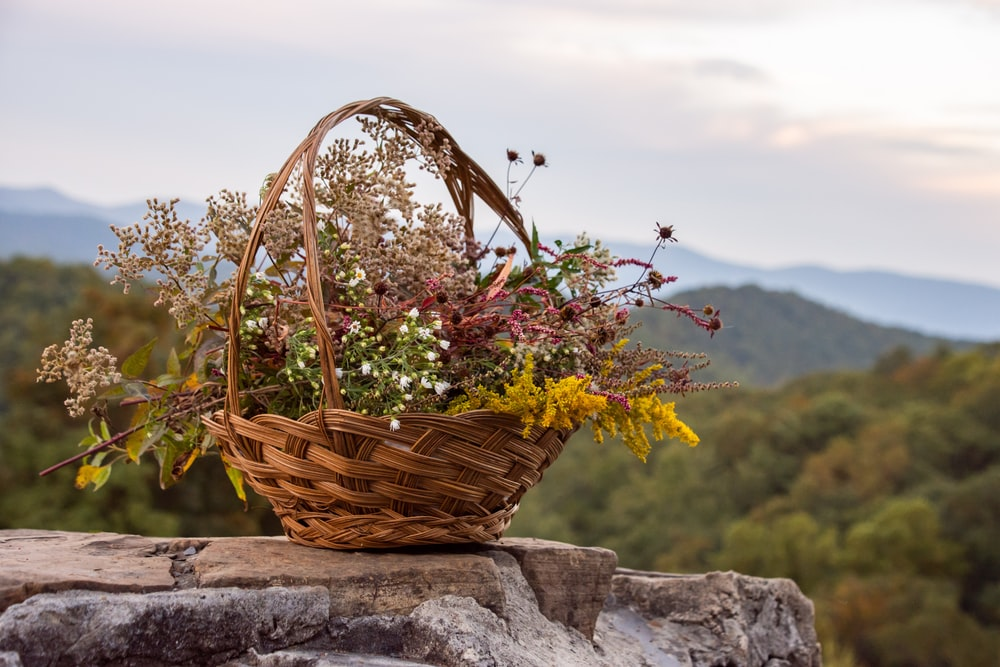 brown woven basket with green and yellow flowers on gray concrete wall during daytime