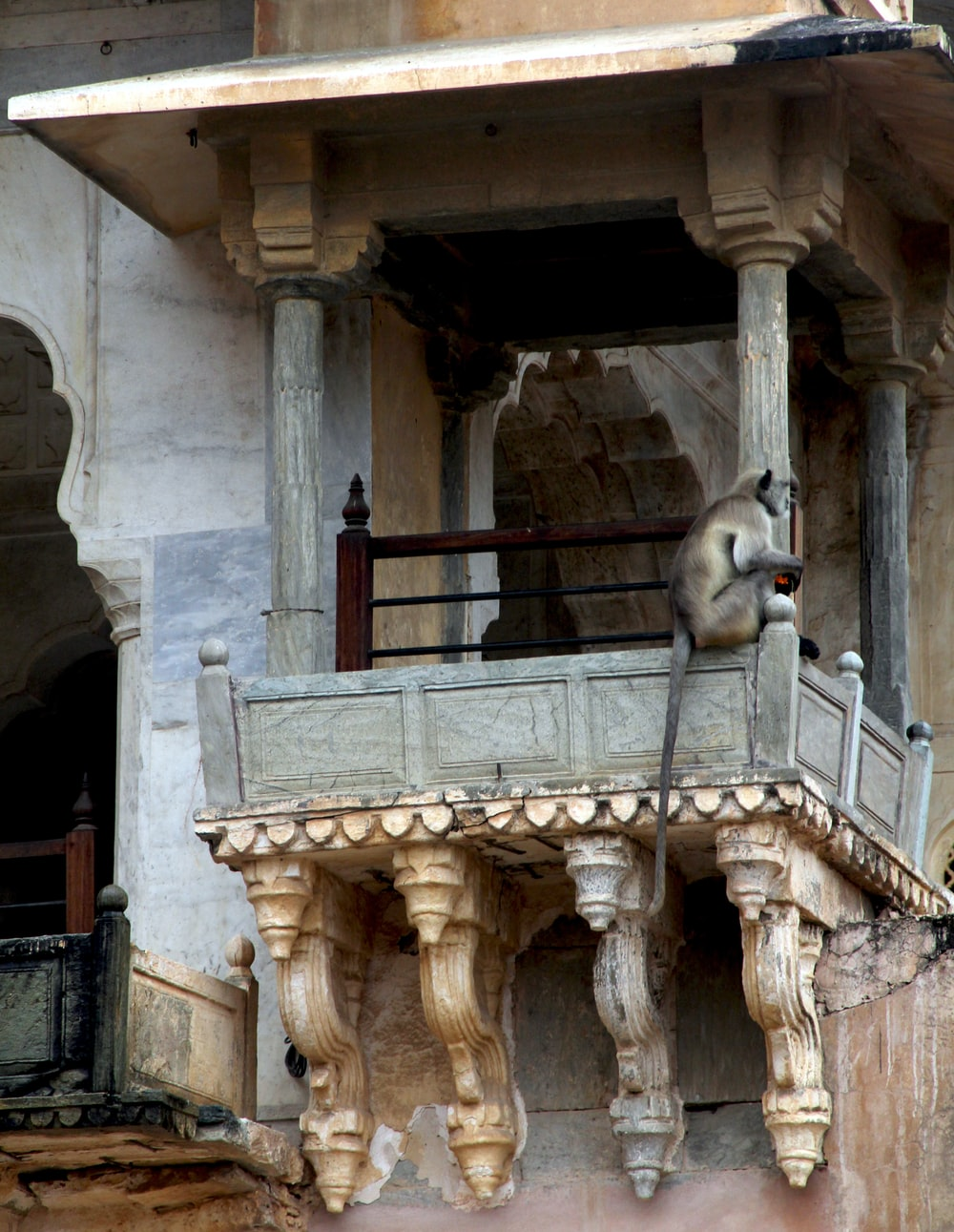 gray monkey on brown wooden balustrade