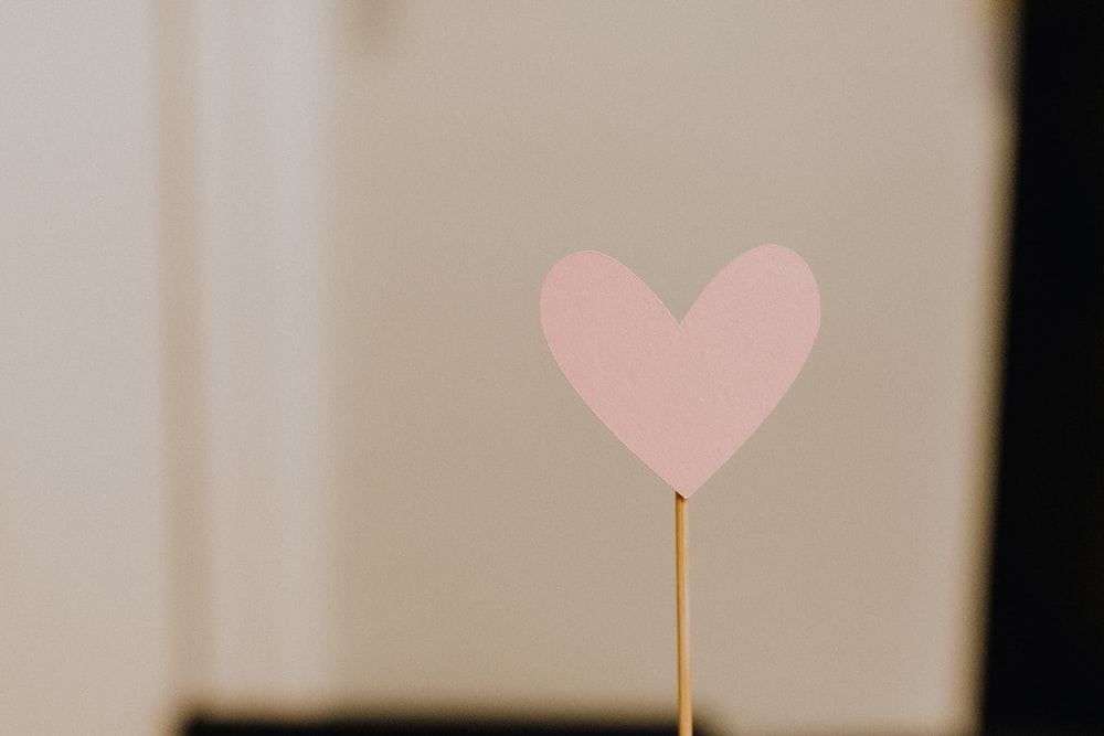 pink heart with brown stick