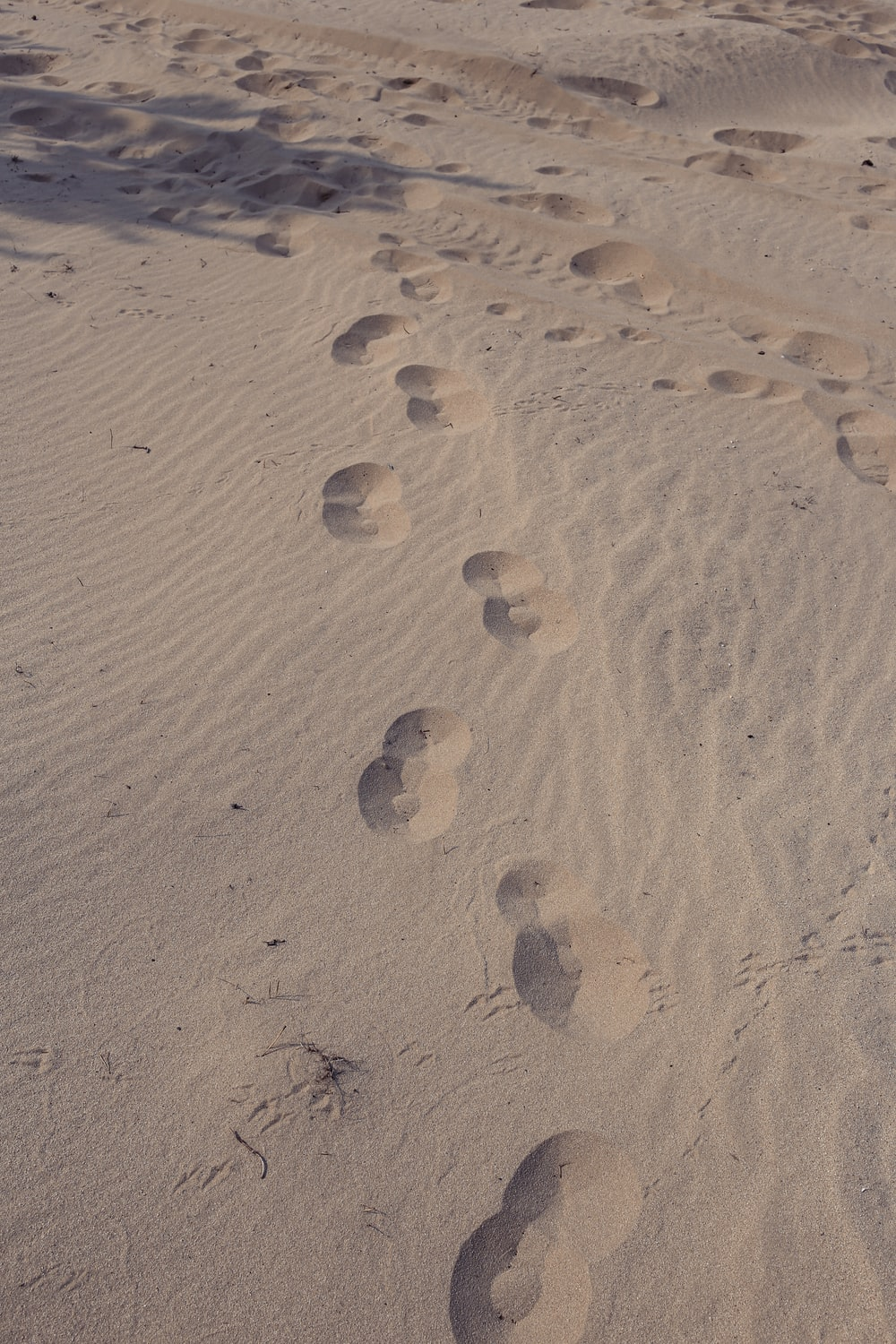 footprints on sand during daytime