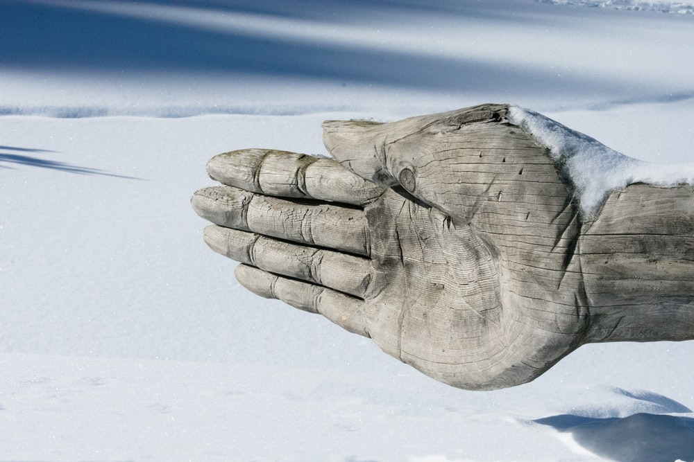 persons hand covered with white snow