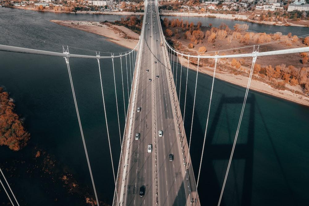 white and gray bridge during daytime