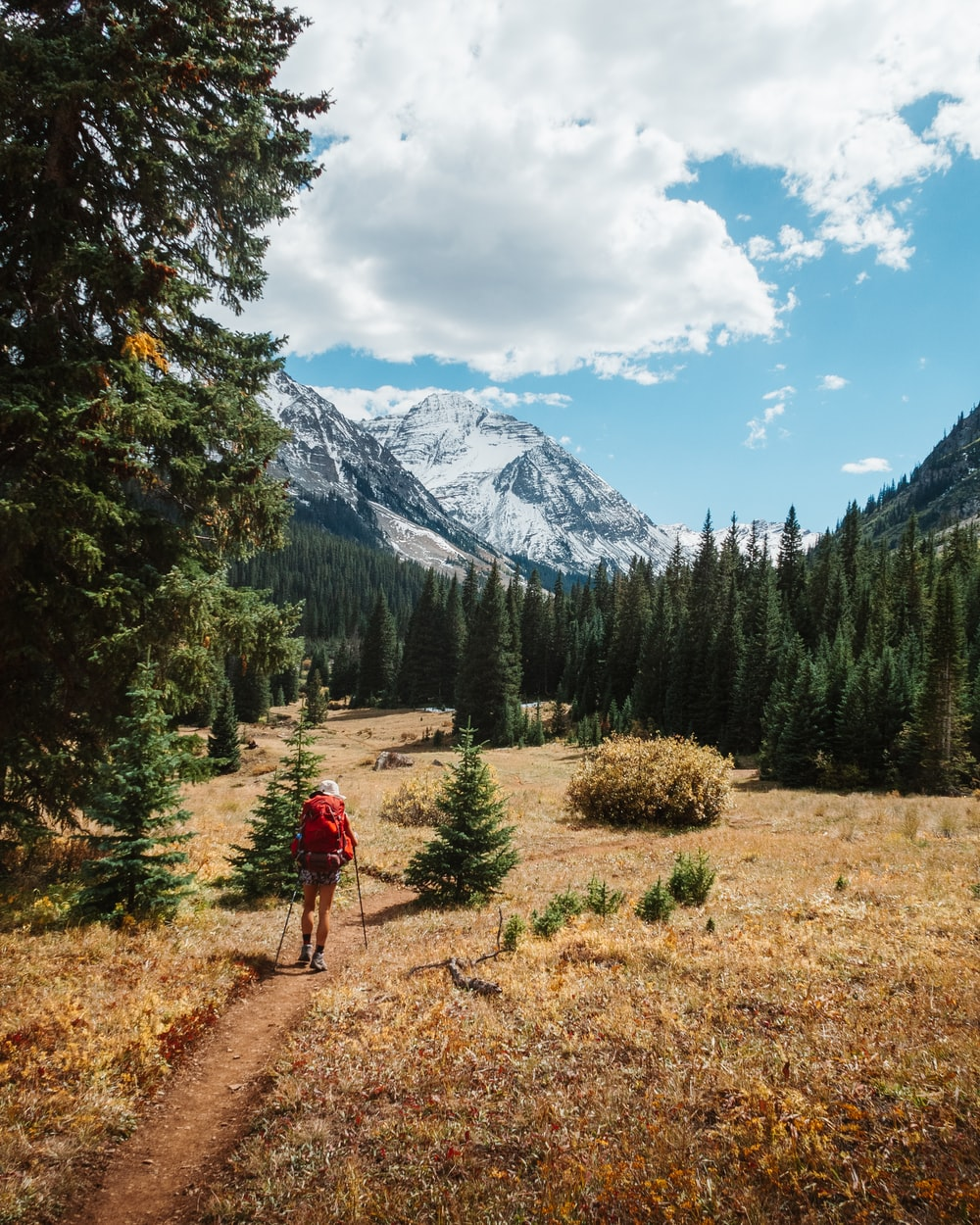 person in red jacket walking on dirt road near green trees during daytime