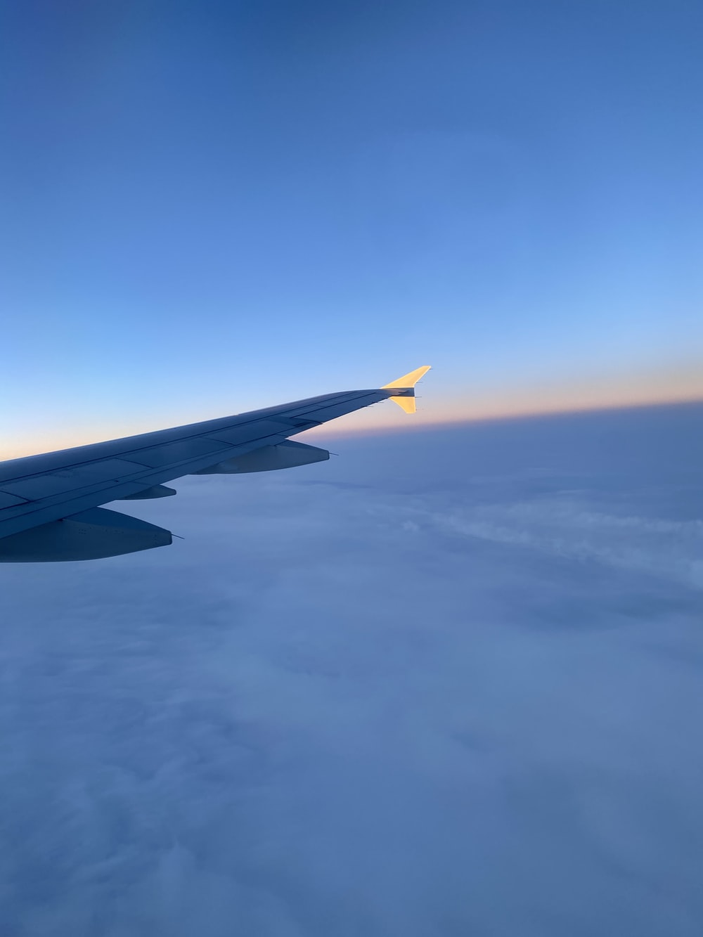 blue and yellow plane wing