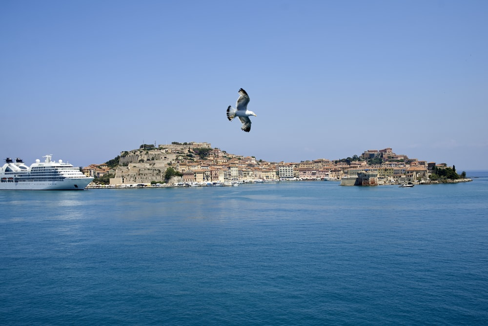 man in white shirt and black pants jumping on blue sea under blue sky during daytime