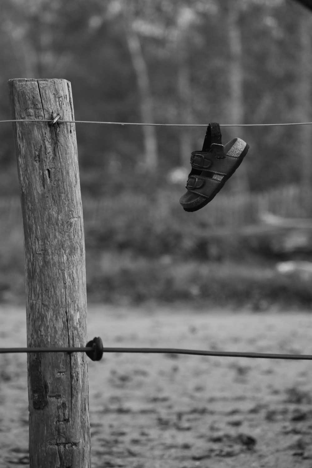 grayscale photo of black and white sneakers on wooden post