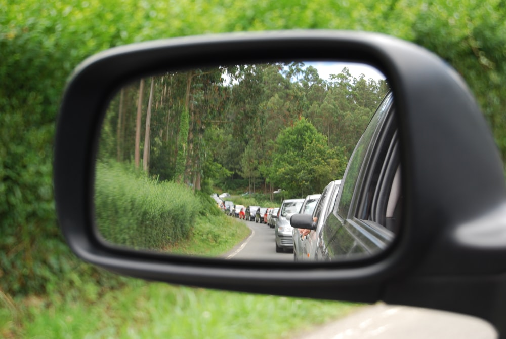 car side mirror showing green trees during daytime