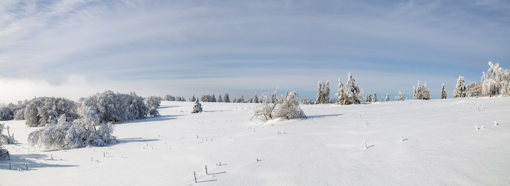 snow covered field under blue sky during daytime
