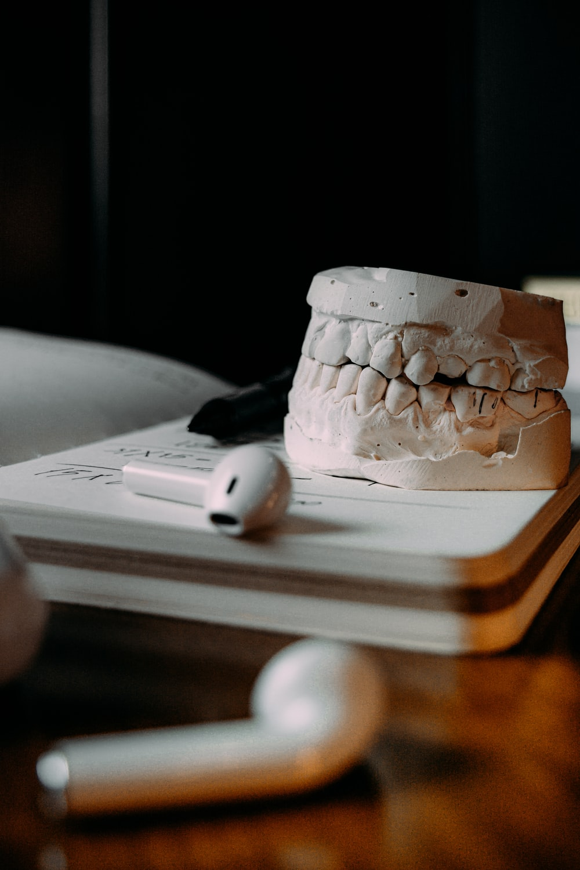 white ceramic skull on book page
