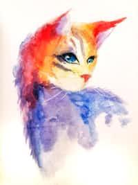 Schrodinger's Cat reverse stories