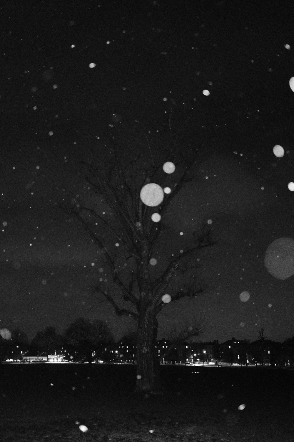 grayscale photo of tree and moon