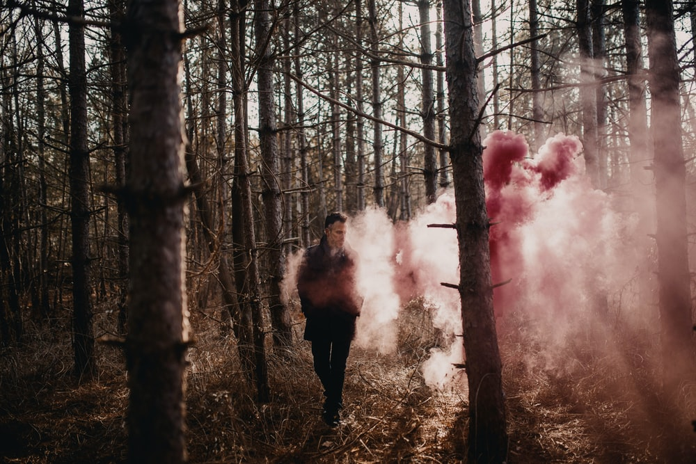 woman in black jacket standing on forest with red smoke