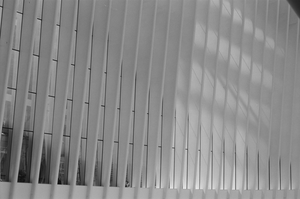 white window blinds in grayscale