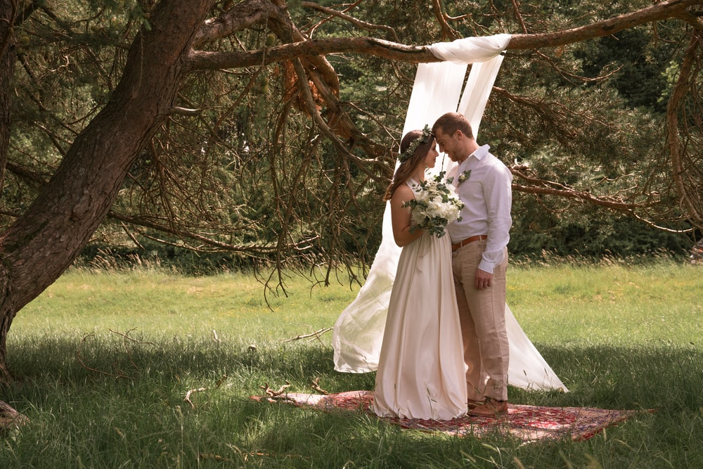 bride and groom kissing under brown tree