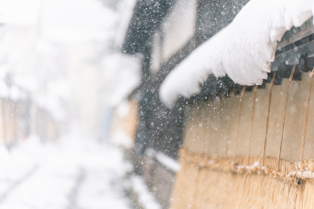 snow on brown wooden fence