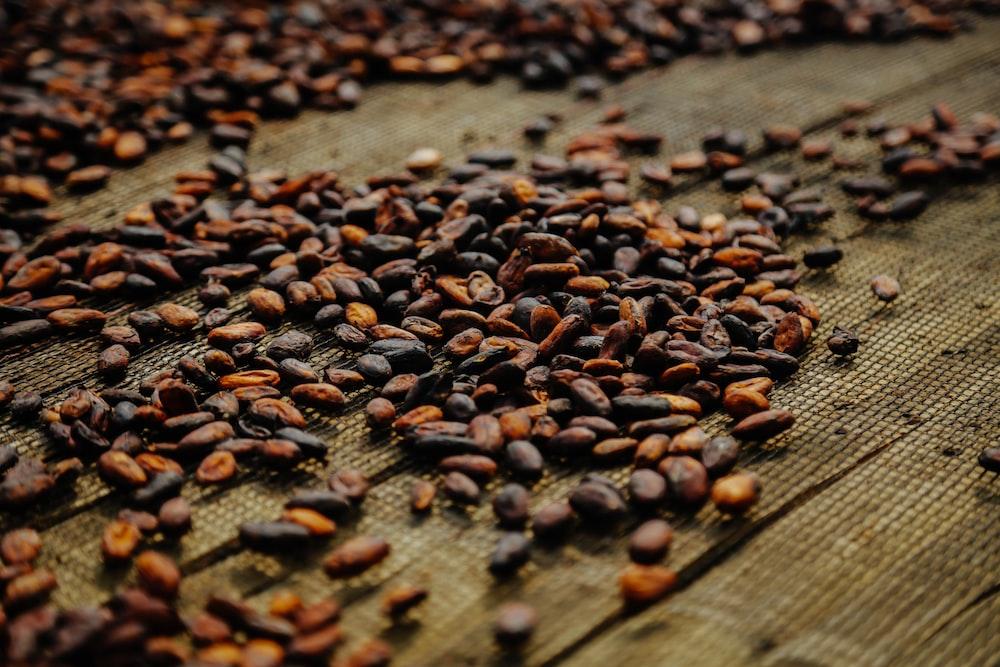 circlemagazine-circledna-benefits-of-cacao
