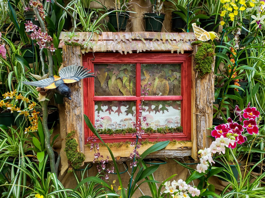 Garden House: Building An Orchid House