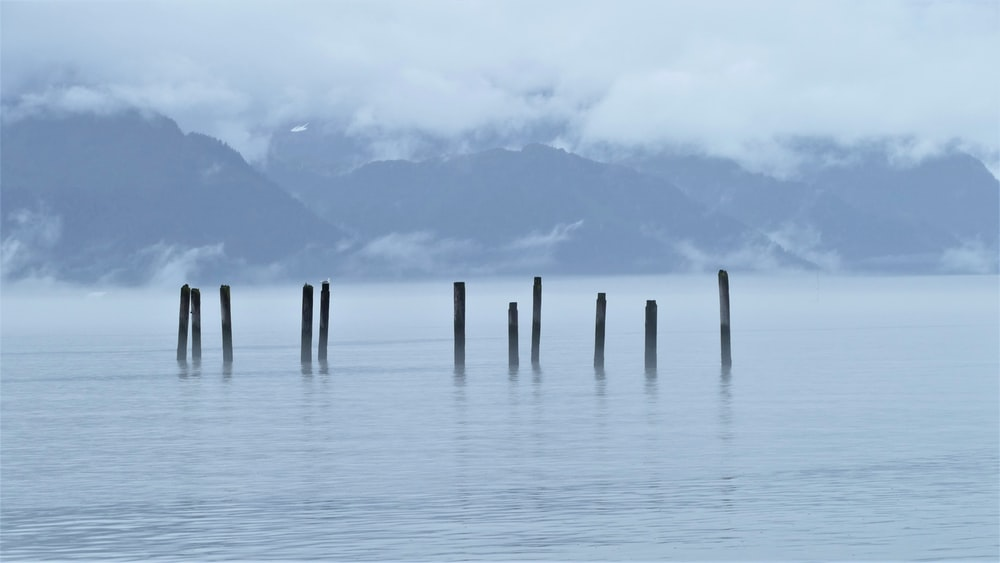 brown wooden posts on sea under white clouds during daytime