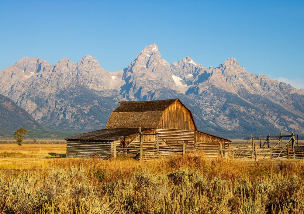 brown wooden barn on brown grass field near snow covered mountain during daytime