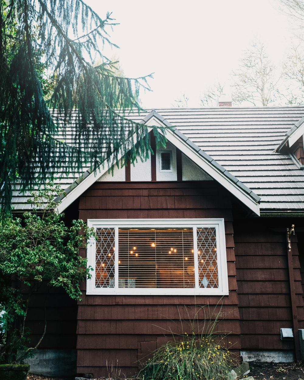 brown wooden house with green plants