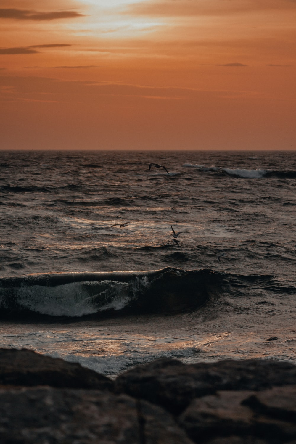 person surfing on sea waves during sunset