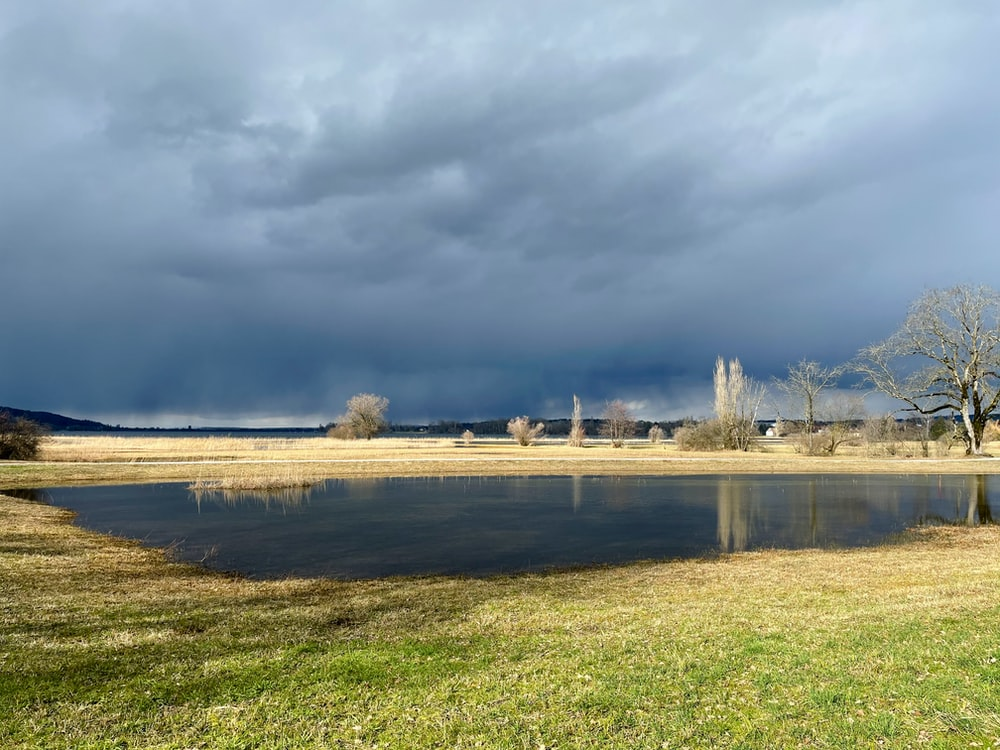green grass field near body of water under white clouds during daytime
