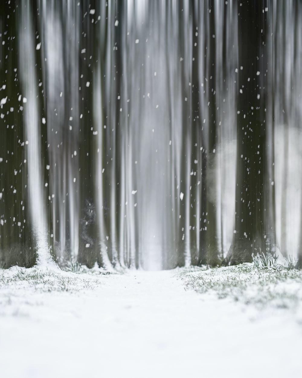 white snow on white surface
