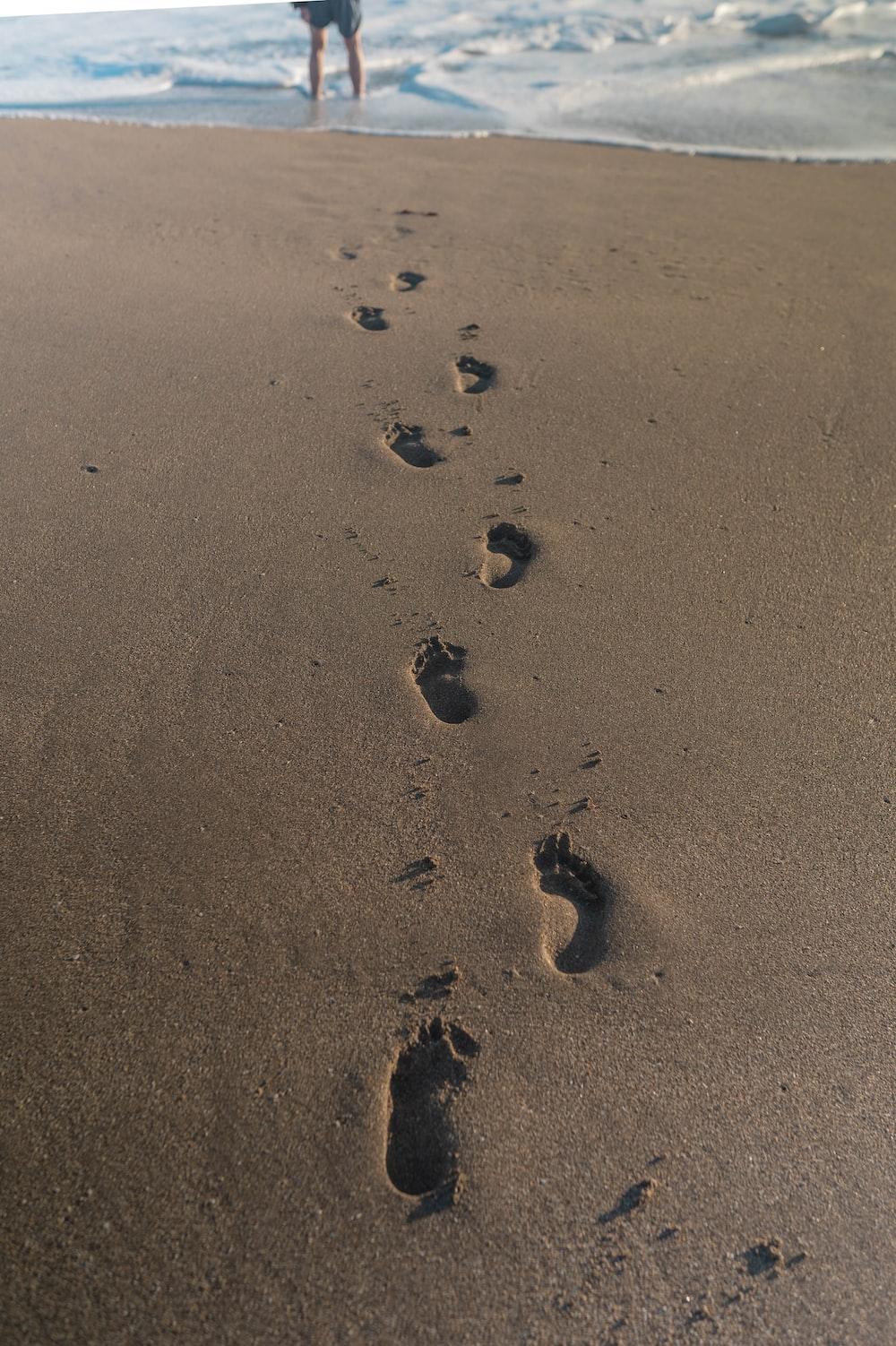black stones on brown sand