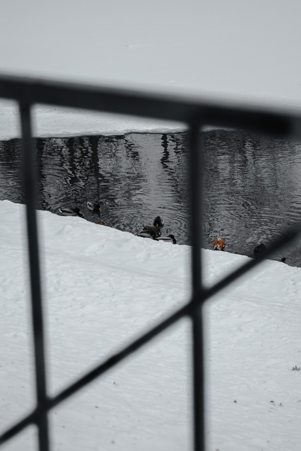 person in black jacket and black pants sitting on snow covered ground during daytime