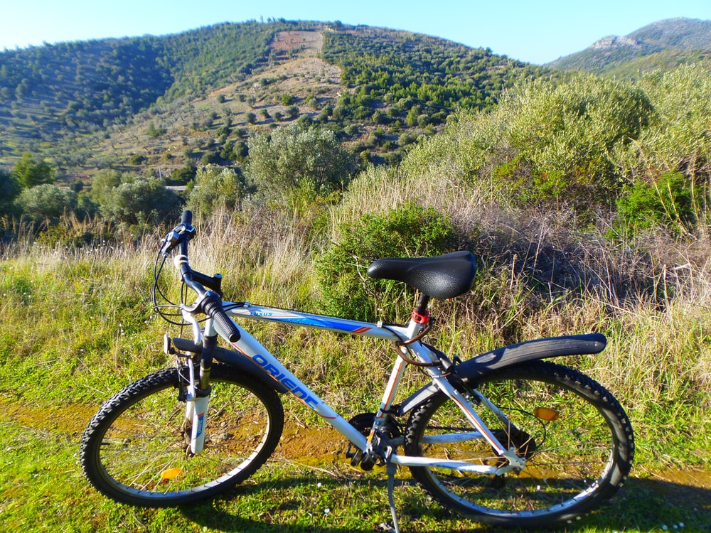 blue and black mountain bike on green grass field during daytime