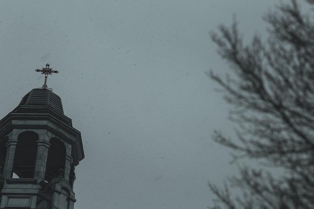 black bird flying over the building
