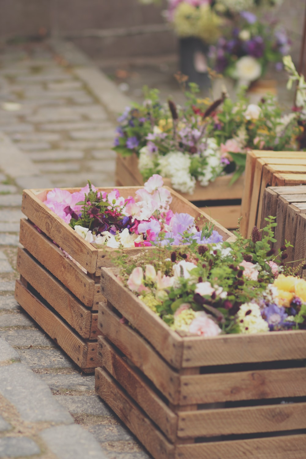 pink and white flowers on brown wooden crate