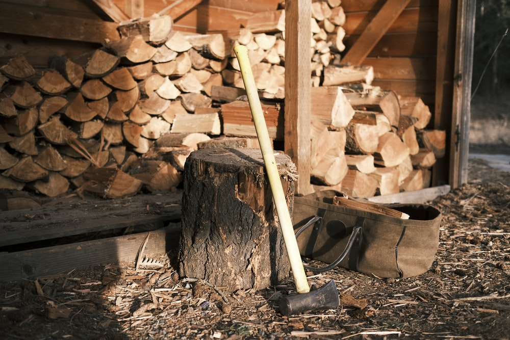 brown wooden stick on fire woods