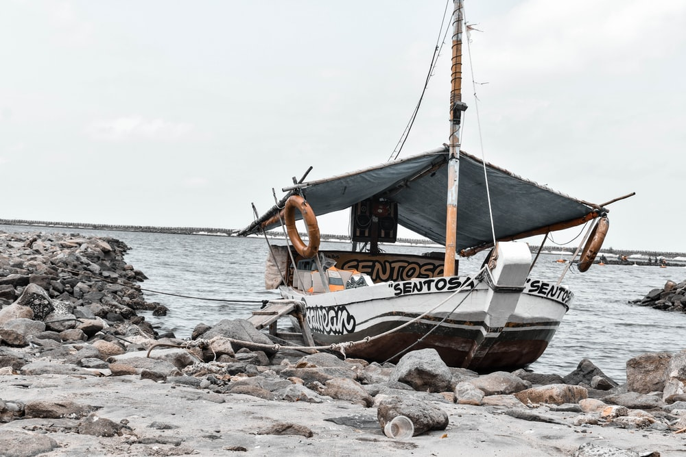 white and brown boat on sea shore during daytime