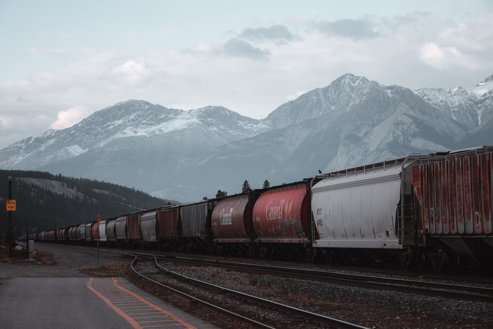 red and gray train on rail road during daytime
