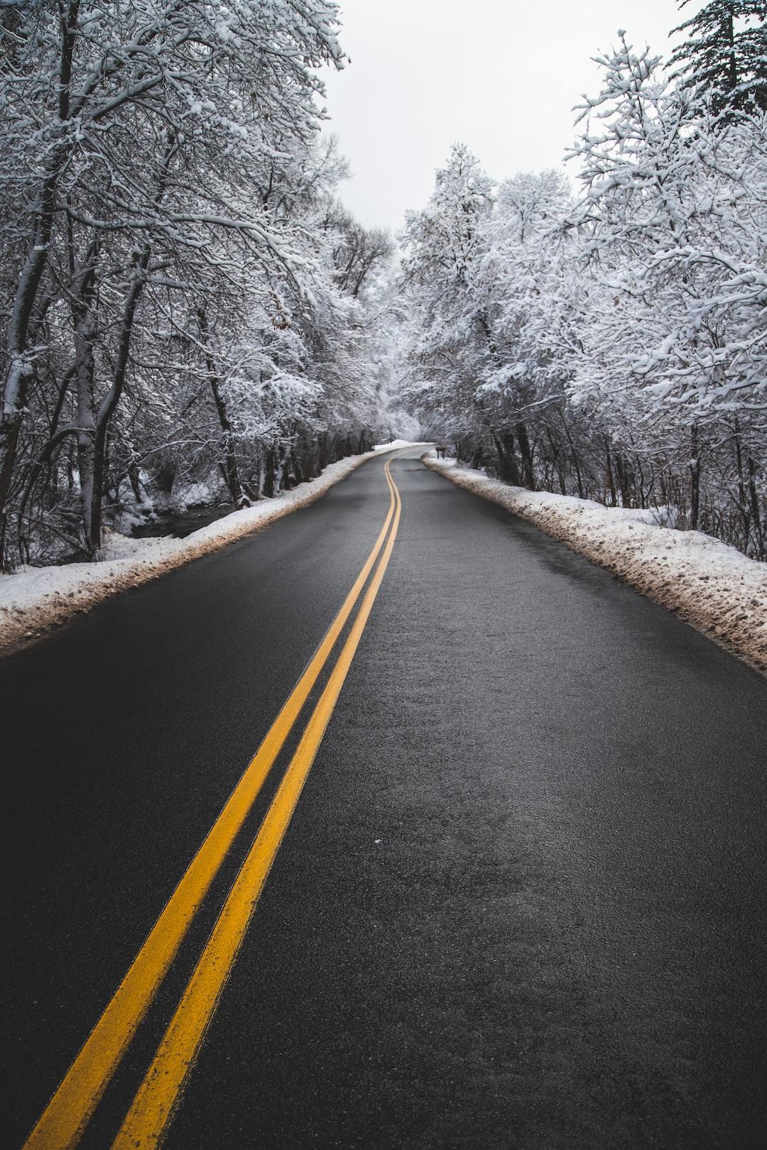 black asphalt road between snow covered trees during daytime