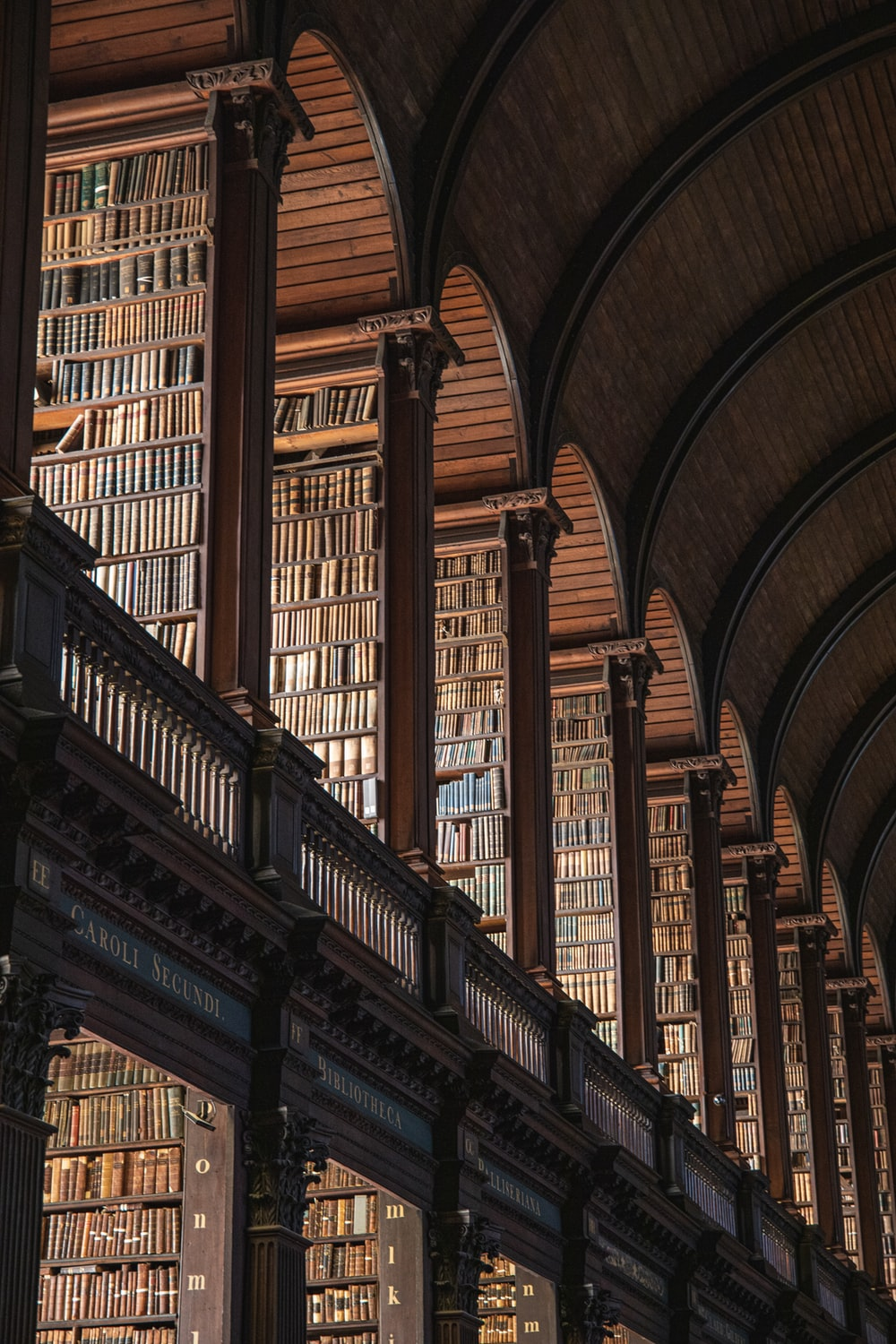 brown wooden book shelves in library