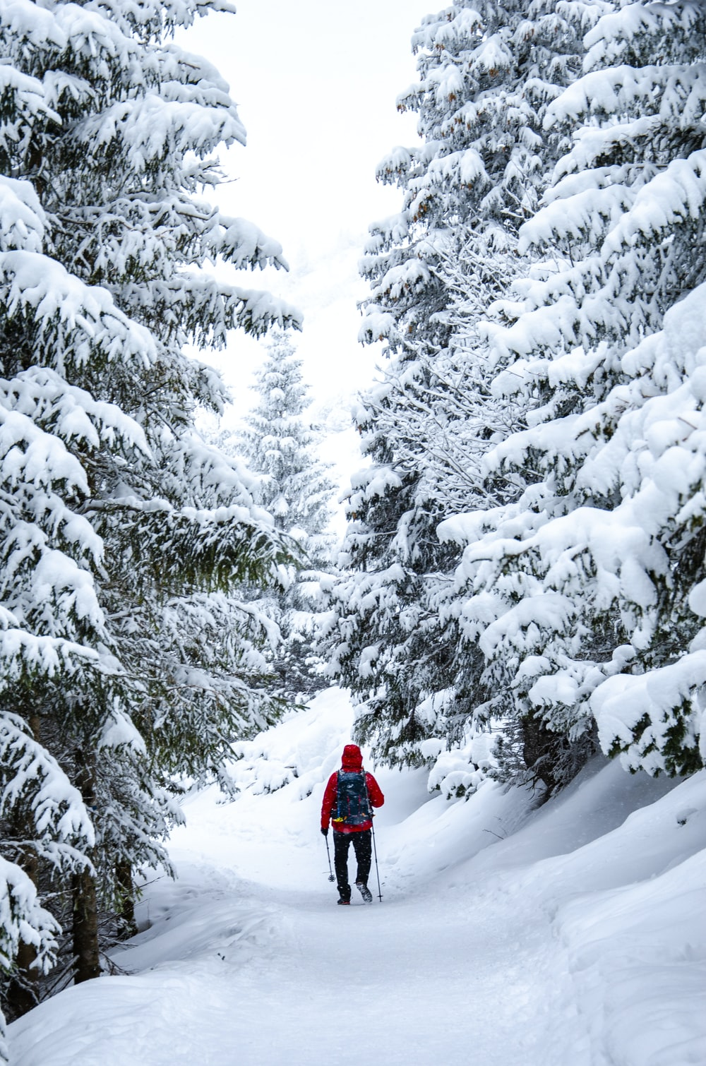 person in red jacket and black pants standing on snow covered ground near trees during daytime