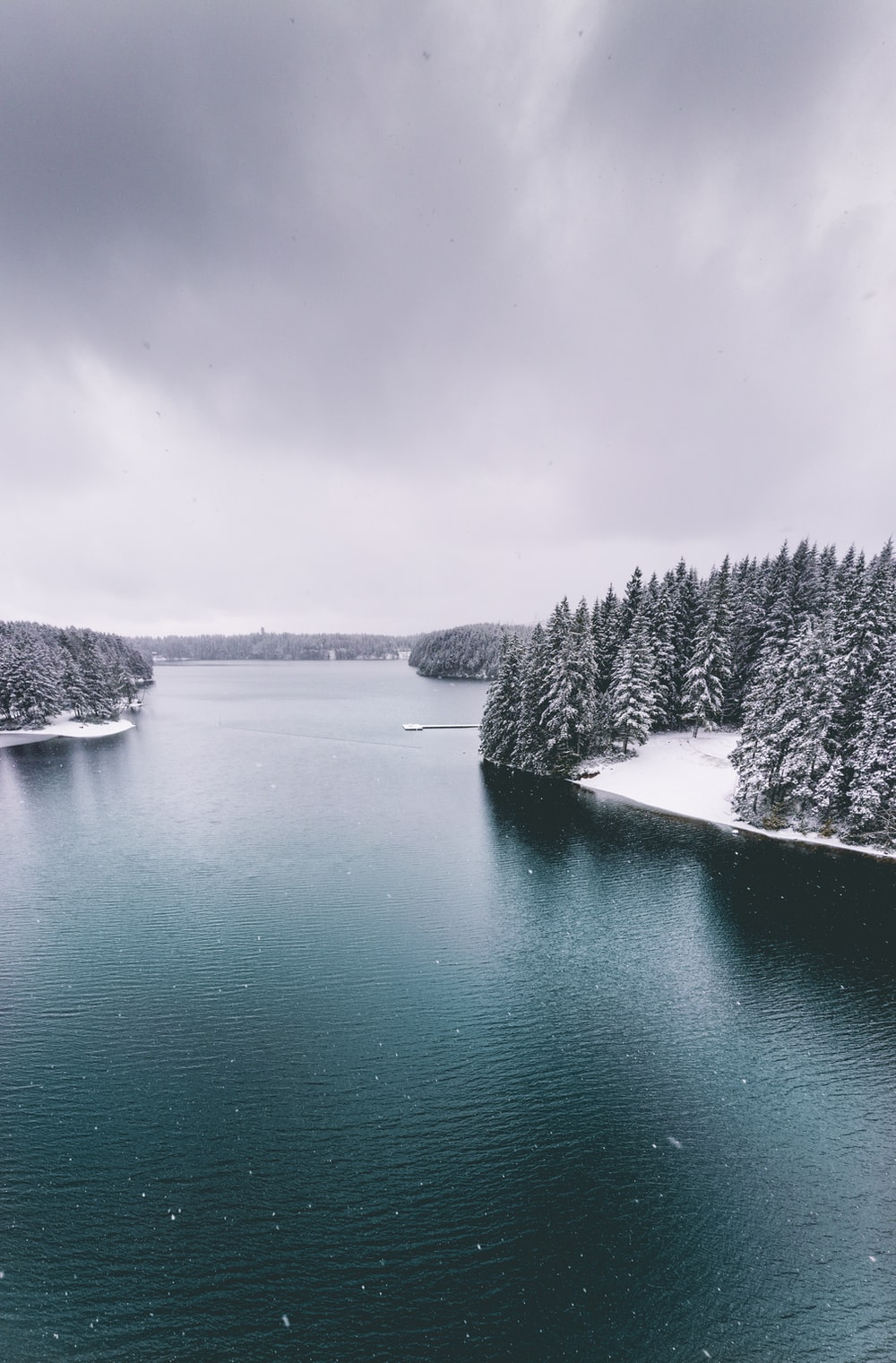 grayscale photo of lake surrounded by trees